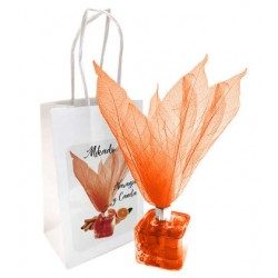 caja con asa mod. tulipan 16,5x12x5x6